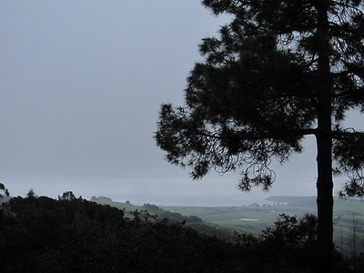 Hearst Castle, a brief view of the coast