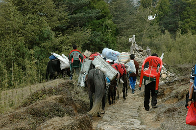 Himalaya Trek: Our support is 10 people, 4 dzos, 4 horses, and lots of equipment.