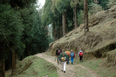 Himalaya Trek: We set out on our trek, with guide Wangchuck leading the way.