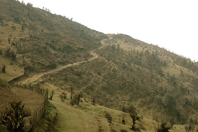 Himalaya Trek: The Nepal side is largely deforested and overgrazed.