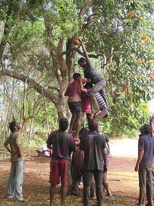 Students celebrate Holi at IISc: Matka-Phod competition (photo by Martin Hartig).