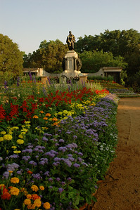 IISc Founder's Day celebration; thousands of potted plants were on display.