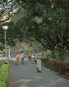 At IISc the street-sweeper ladies are busy with all the leaf litter.