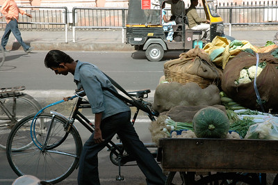 Jaipur: bicycle-powered cargo carts are often laden with commerce.