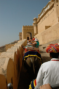 Amber Fort, Jaipur: a busy elephant highway up to the palace on the hill.