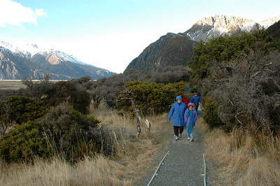 A cold and windy winter morning, on a walk near Aoraki (Mt.Cook). South Island. New Zealand.