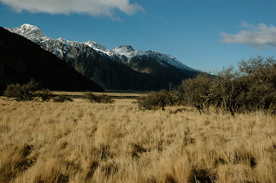 this is the dry side of the `continental' divide. On a walk near Aoraki (Mt.Cook), New Zealand.