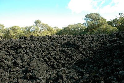 Here on Rangitoto volcano/island, Auckland, NZ there are open fields of `aa' lava, sharp and jumbled.