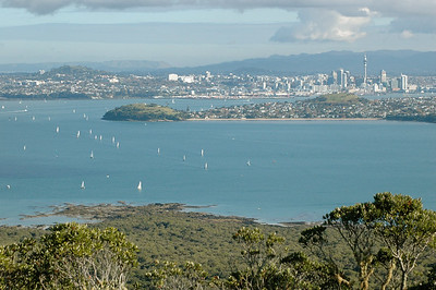 view of Auckland from the summit of Rangitoto Island.
