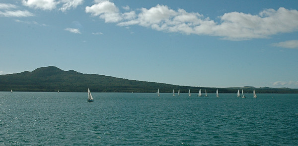 Auckland NZ: many sailboats out, with Rangitoto in background.