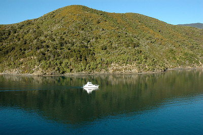 New Zealand Cook Strait: today is a beautiful and calm day for the passage.