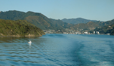 On the return trip across the Cook Strait, we depart Picton on a sunny day.