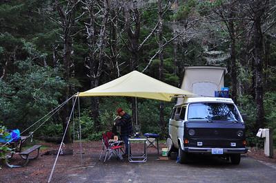 Campsite at Honeyman State Park