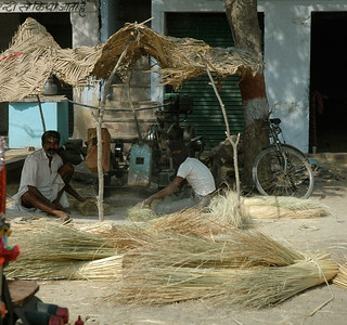 Rajasthan: an engine makes these wood hammers thump the wheat.