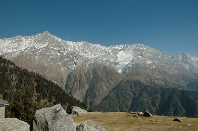 Wow! The Dhauladhar range pops into view as we reach Triund meadow.