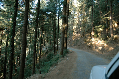 A bumpy ride to the trailhead.  [Dharamsala to Triund.]