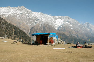 The Dhauladhar range pops into view as we reach Triund meadow. Of course, there are three tea stalls here too.