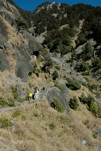 Rugged terrain, but the path gently switchbacks up the hill. Hiking in Dharamsala.