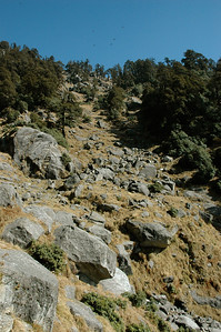 We are mere specks in the jumble of rocks ahead. [Dharamsala to Triund.]