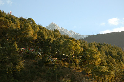 A peek at the peak. Notice the prayer flags on the near hillside. [Dharamsala to Triund.]