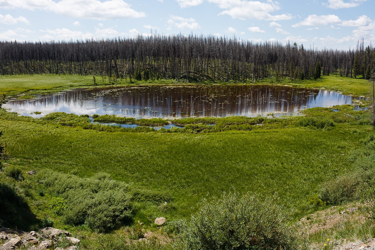 Shallow mountain-top lake.