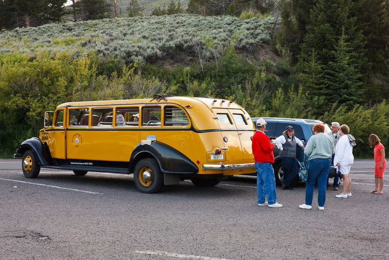 Yellowstone tour bus
