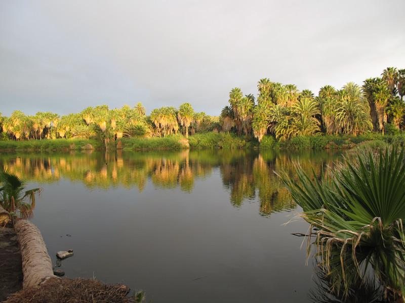 San Ignacio lagoon @ sunrise