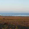 2010-08-22 Cayucos Beach 6