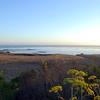 2010-08-22 Cayucos Beach 4
