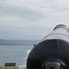 Cannon Wollongong
