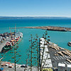 Napier Port