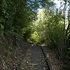 Walk to Te Anna Falls Hawkes Bay