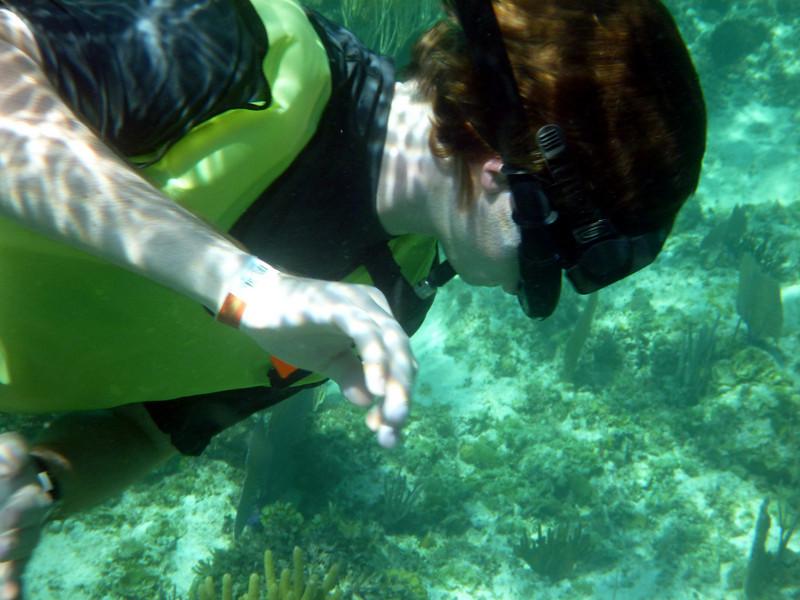 Mike snorkeling