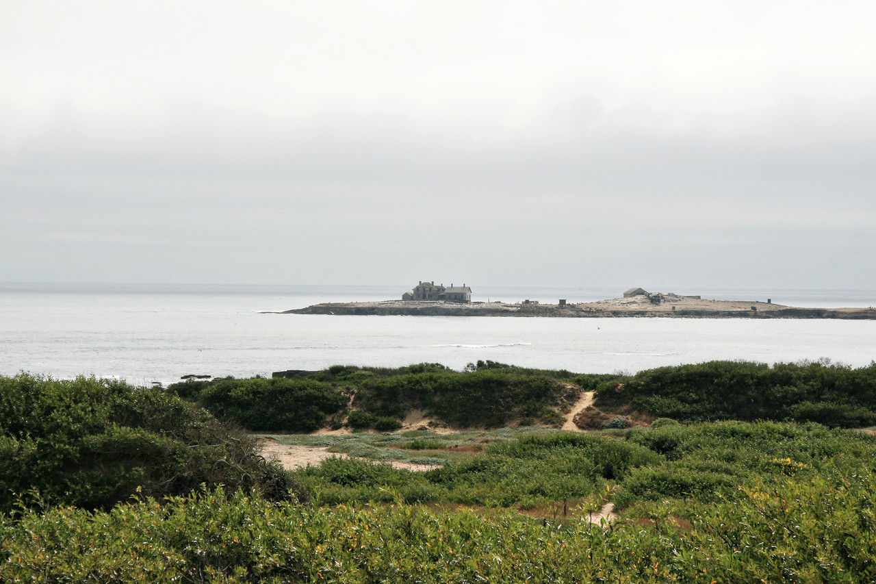 August 1, 2010 Ano Nuevo state park looking toward Ano Nuevo Island. The 13- acre island is closed to the public.  An automatic buoy replace the five story light tower in 1948.  (A lightkeeper and his family used to live on the island.)