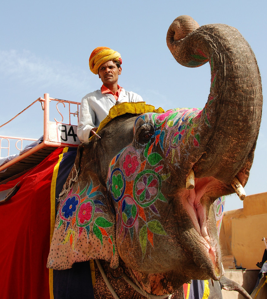 One way of getting to Amber Fort is atop an elephant but we took a jeep.