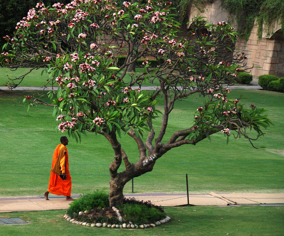 A Buddhist Monk walking from the shrine in Delhi where Mahatma Gandhi was cremated.