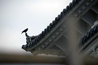 2010 - Japan -  Himjei