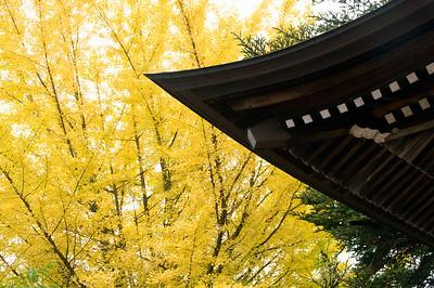 2010 - Japan - Takayama