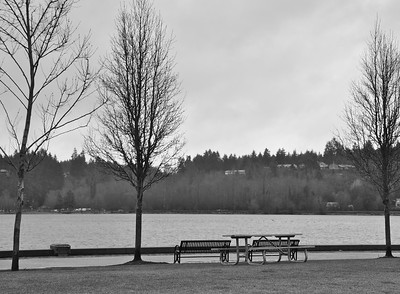January 12, 2010 - Lonesome Park - Capitol Lake
