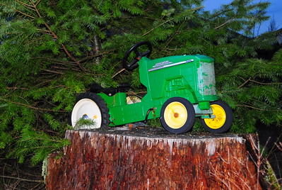 January 7, 2010 - Stump Tractor at the Vaughn's