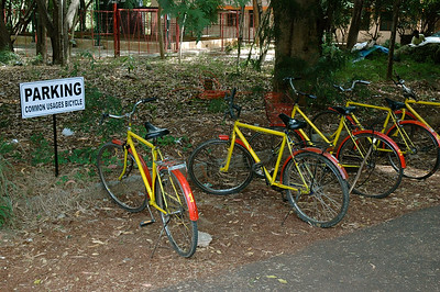 new! shared bicycles