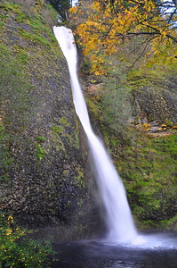 One of the waterfalls in the Columbia Gorge - Oregon side.
