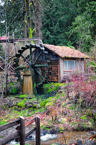 In 2003, SR 106 was realigned, and the Dalby Waterwheel was left out of public view.  The family of David H. Dalby, the son of Ed and Ethel, donated the waterwheel and this land to the Hood Canal Improvement Club, which, with the generosity and hard work of many people, relocated the waterwheel to this site in 2005.