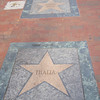 Little Havana's Walk of Fame i Calle Ocho.