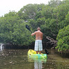 """Vi er på vei rundt en liten """"øy"""" av <a href=""""http://en.wikipedia.org/wiki/Mangrove"""">mangrove</a>."""
