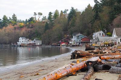 Public beach at Dash Point