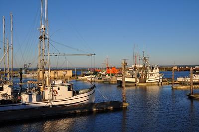 Westport, Washington boat harbor at late afternoon.
