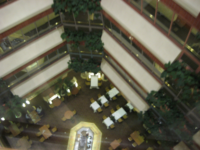 View from the hotel atrium