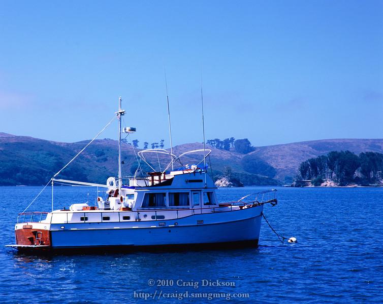 At Nick's Cove, Tomales Bay