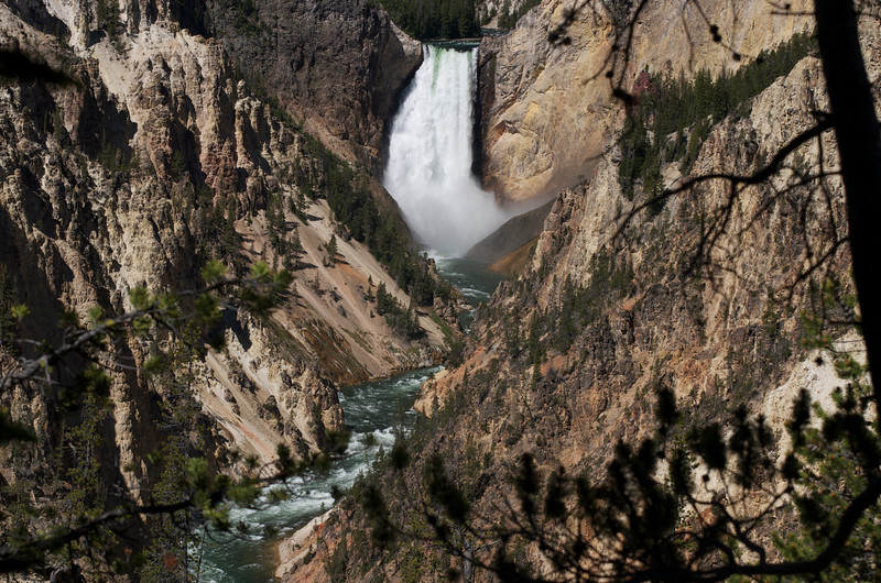 """Lower Falls of """"The Grand Canyon of the Yellowstone"""""""